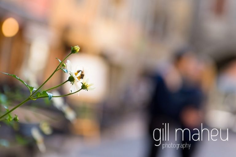 close up of daisy flower with couple kissing in the background in couple lifestyle photo session in the Vielle Ville of Annecy by Gill Maheu Photography, photographe de mariage et de famille
