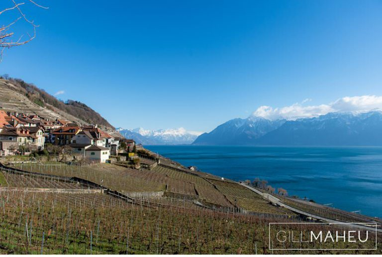 view of Lac Leman over vineyards down towards Montreux at Lausanne wedding by Gill Maheu Photography, photographe de mariage