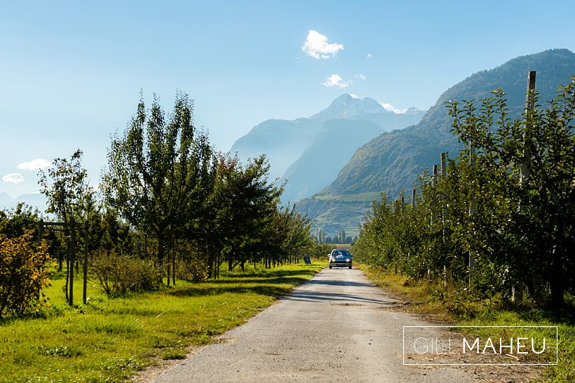 glorious sunshine autumn wedding valais