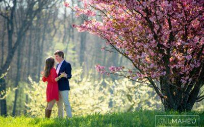 glorious cherry blossom engagement shoot satigny geneva