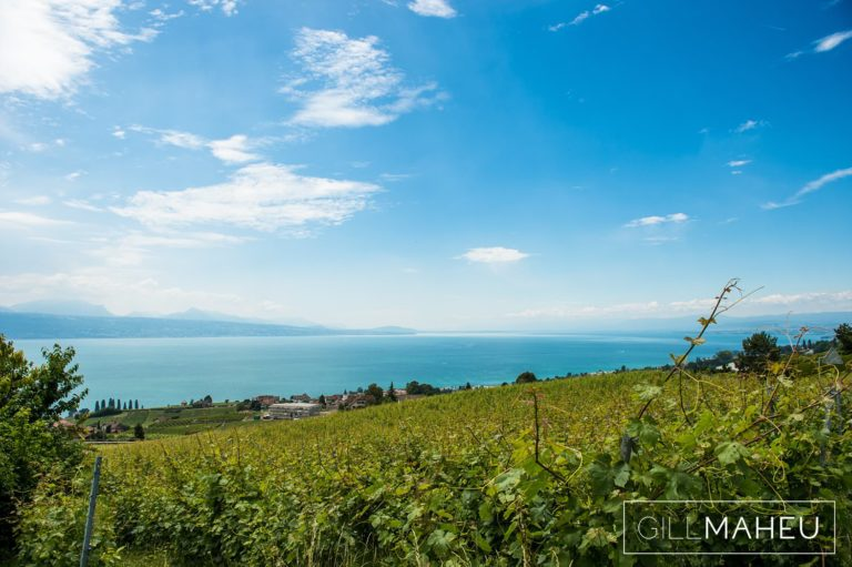view over lac leman and the vineyards at Lutry, Lausanne wedding by Gill Maheu Photography, photographe de mariage