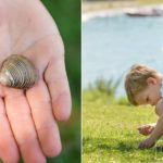 young boty looking for treasure and finding special shells on the shore of lac leman at summer sun lifestyle photography session with beautiful young family in Lausanne by Lifestyle photographer Gill Maheu Photography, photographe de famille