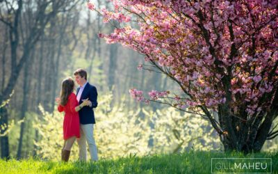 glorious cherry blossom engagement shoot satigny geneva